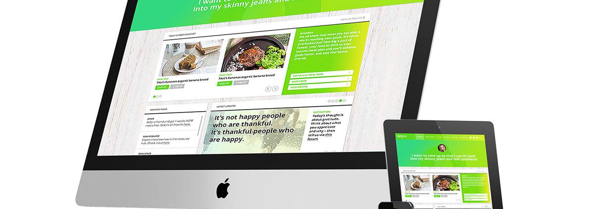 web-design-services-my-basic-llc